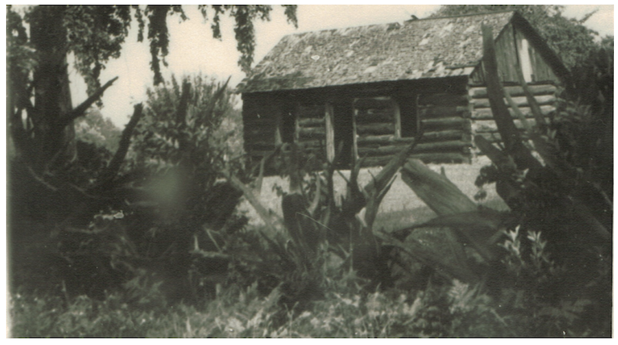Luther Lincoln cabin